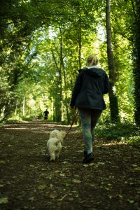 Wickham walks