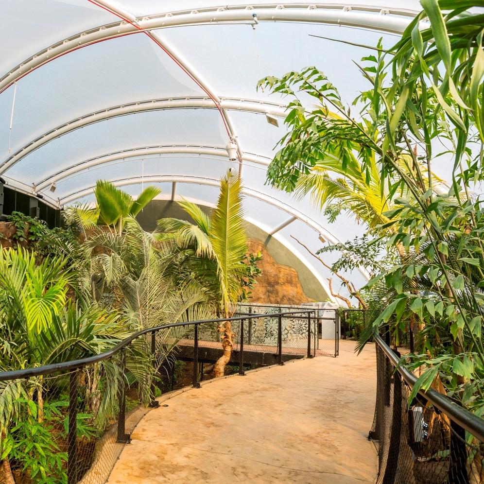 Marwell Zoo Tropical House