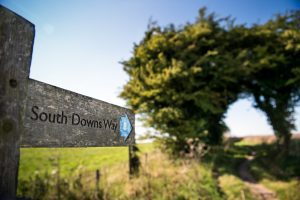 South Downs Way, Harvey Mills Photography