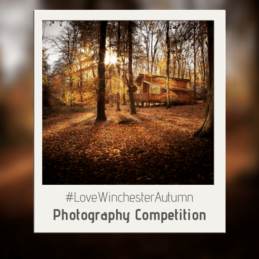 Love Autumn Competition