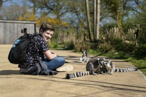 A boy sitting on the floor with Lemurs playing beside him at Marwell Zoo
