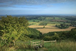 Image of the South Downs