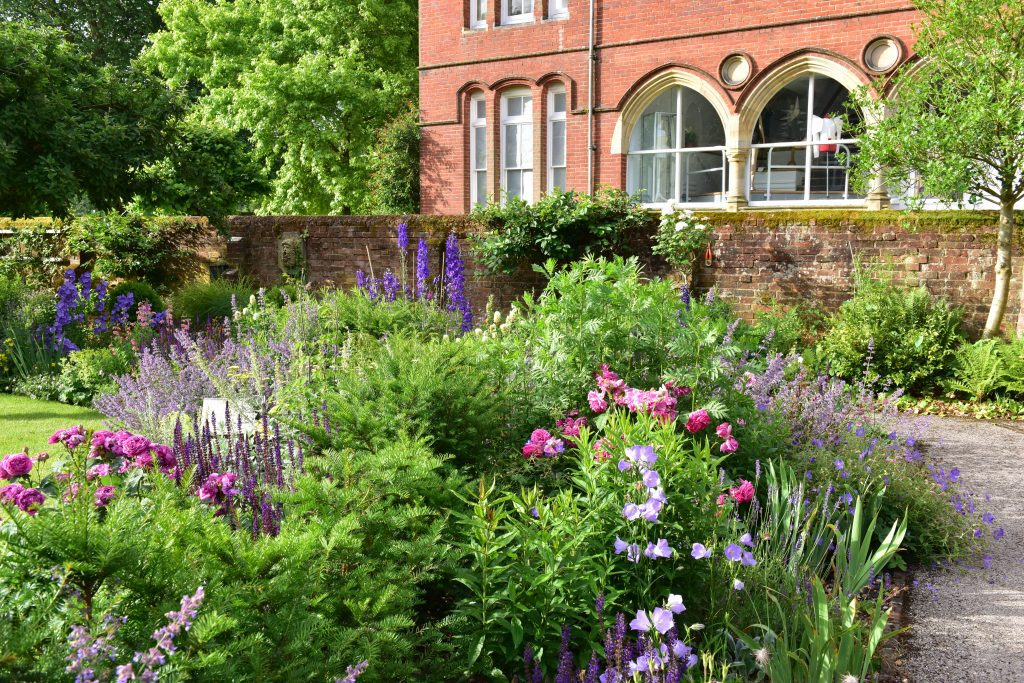 Flowers in the Winchester College grounds