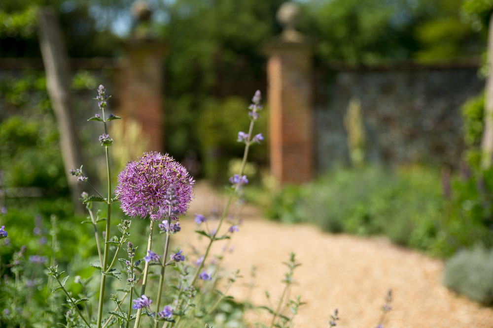 A path on the Chawton House grounds