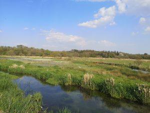 a river running through water meadows