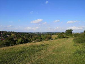 views of winchester city centre from WhiteShute Ridge