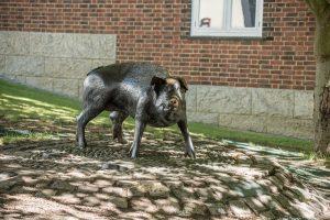 the Hampshire hog sculpture