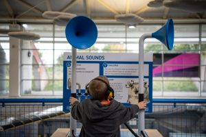 A child playing with sound tubes
