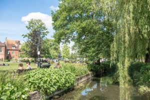 The River Itchen flowing beside Abbey Gardens in the sunshine